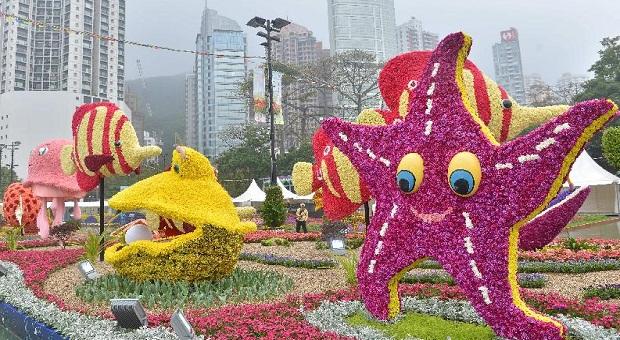 Hong Kong Flower Show 2015