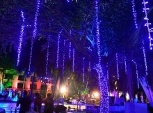 Garden of Dreams in Goa